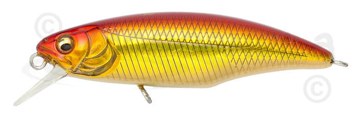 megabass great hunting minnow 48s