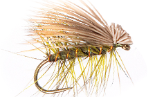Trump CADDIS DRY FLY PATTERNS